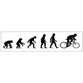 Bike-Evolution